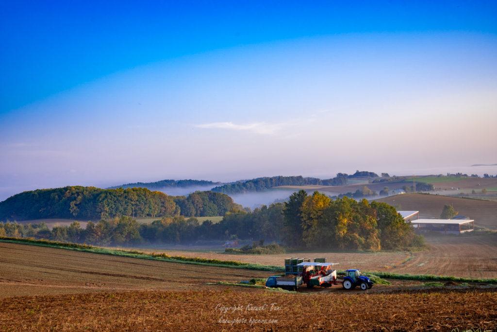 中央に霧がかかっている川西の丘(秋)